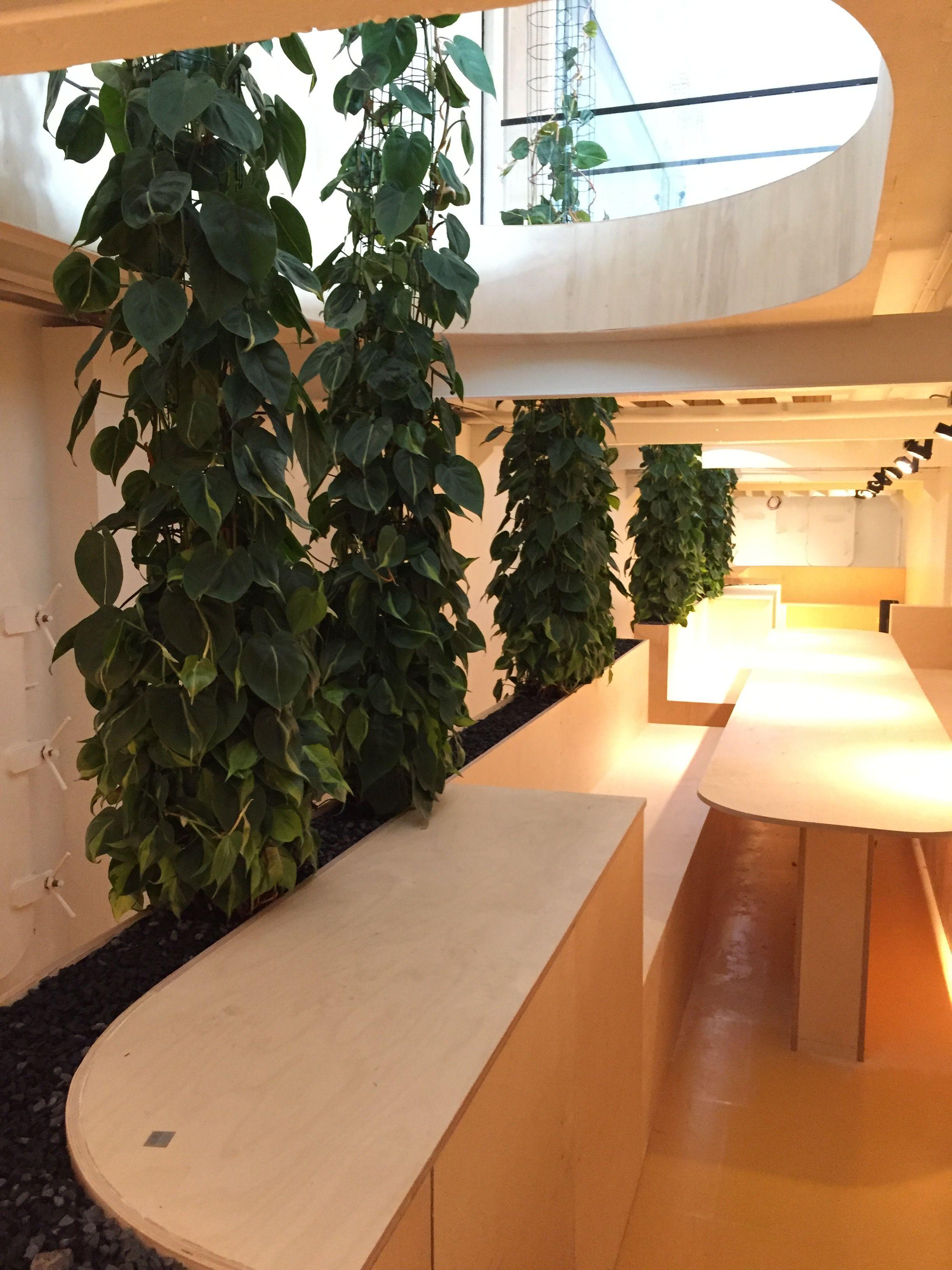 Klimplanten op verlengde basis in maatwerk interieur | Projecten ...