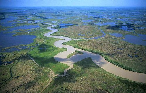 Bayou Country Pecan Island Mississippi River Delta Vermillion