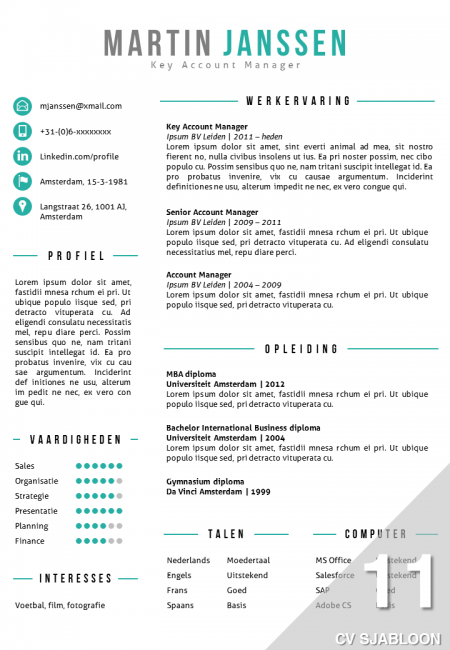 Modern Cv Sjabloon In Word En Powerpoint  PaginaS Cv Sjabloon