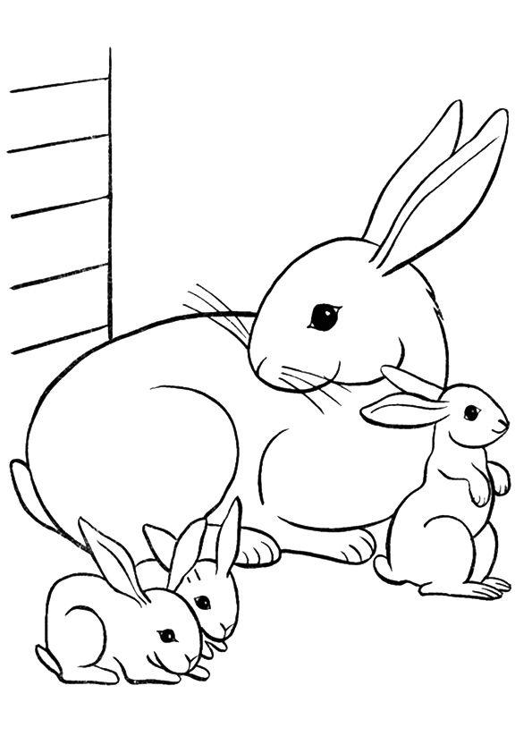 Print Coloring Image Momjunction Bunny Coloring Pages Family Coloring Pages Animal Coloring Pages