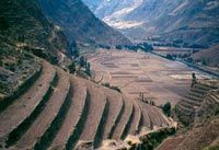 Los Andenes Son Terrazas Agrícolas Artificiales Que Sirven