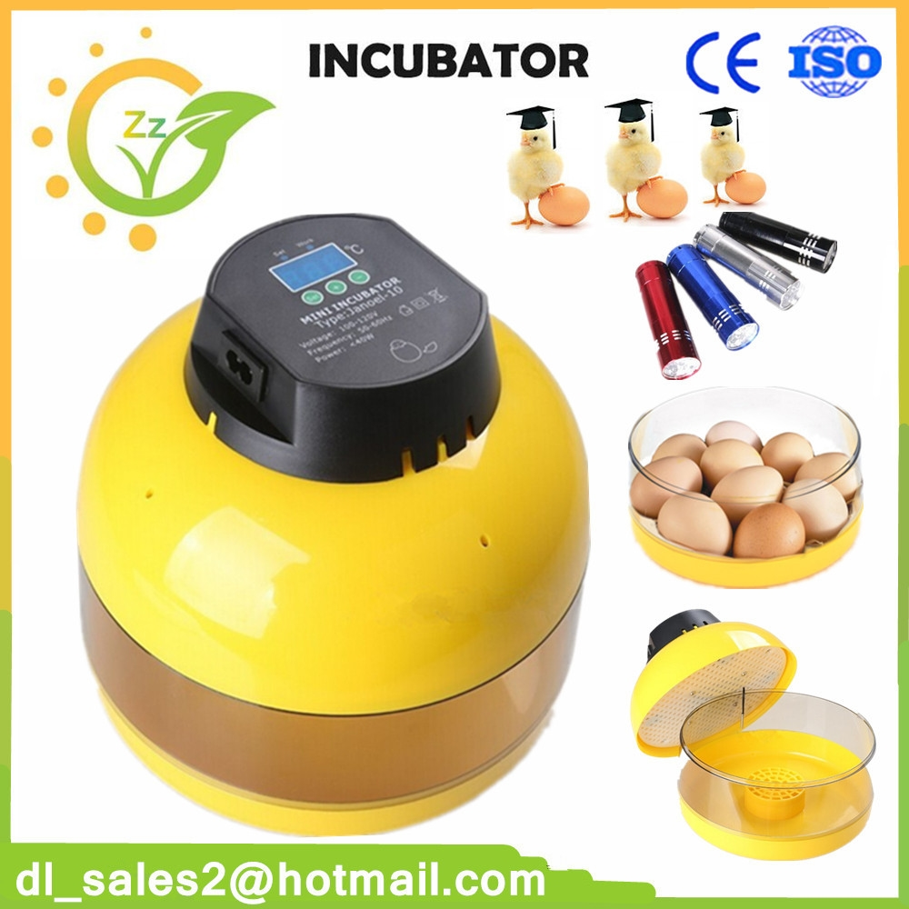 3698 Buy Here Hot Sale Egg Incubator Reptile Brooder Poultry 2016 220v 5g Diy Ozone Generator And Circuit Board For Air Or Water Hatcher Mini Chicken Goose Duck Automatic