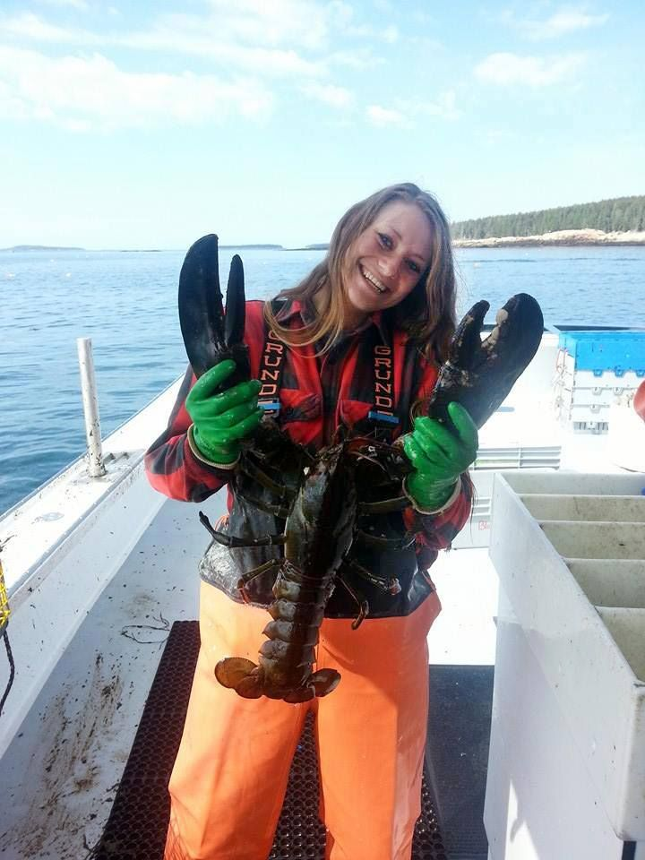 Amanda joe makes catching lobster look easy but don 39 t be for Maine fishing license