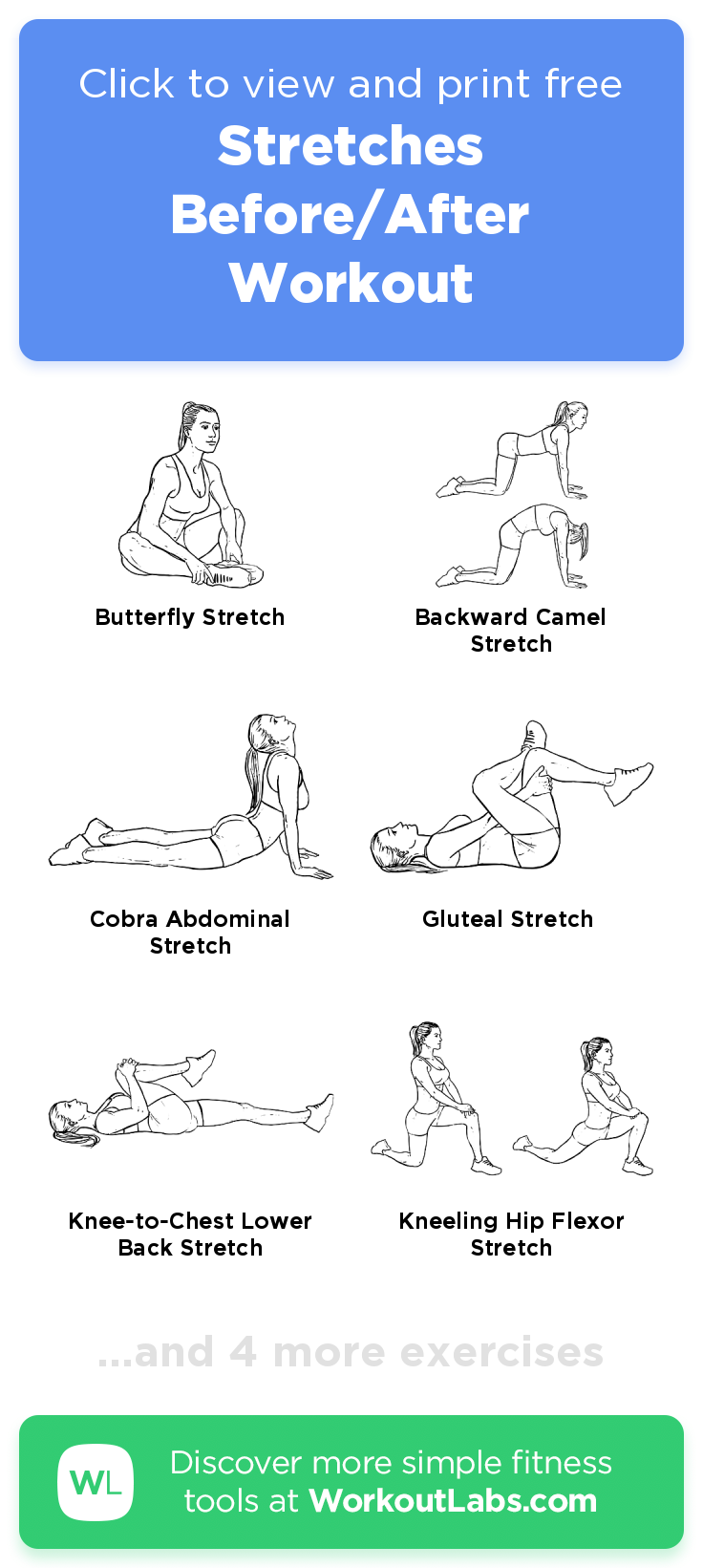 Stretches Before/After Workout · Free workout by WorkoutLabs Fit