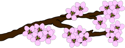 how to draw a blossom tree step by step