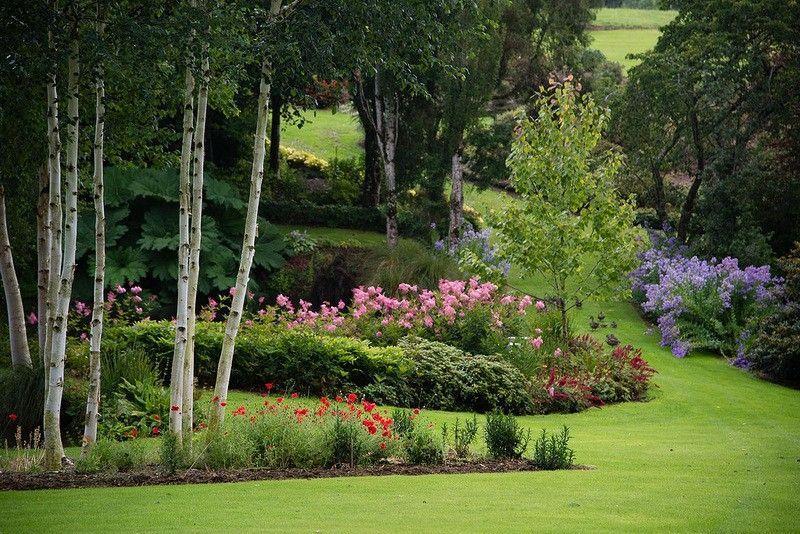 Сад Maple Glen