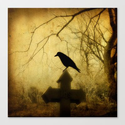 Vintage Crow Stretched Canvas by Strange Days - $85.00