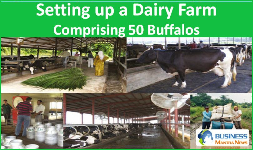 If you are want to startup business in India, Dairy