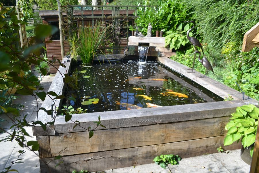 Koi carp pond with railway sleepers water features for Fish pond features