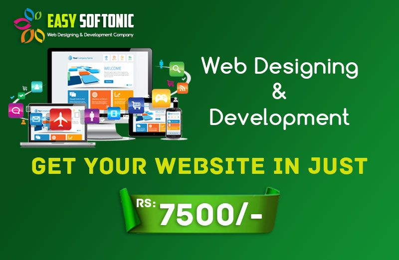 Easysoftonic Web Design And Internet Marketing Company At Affordable In 2020 Small Business Web Design Web Design Small Business Website Design