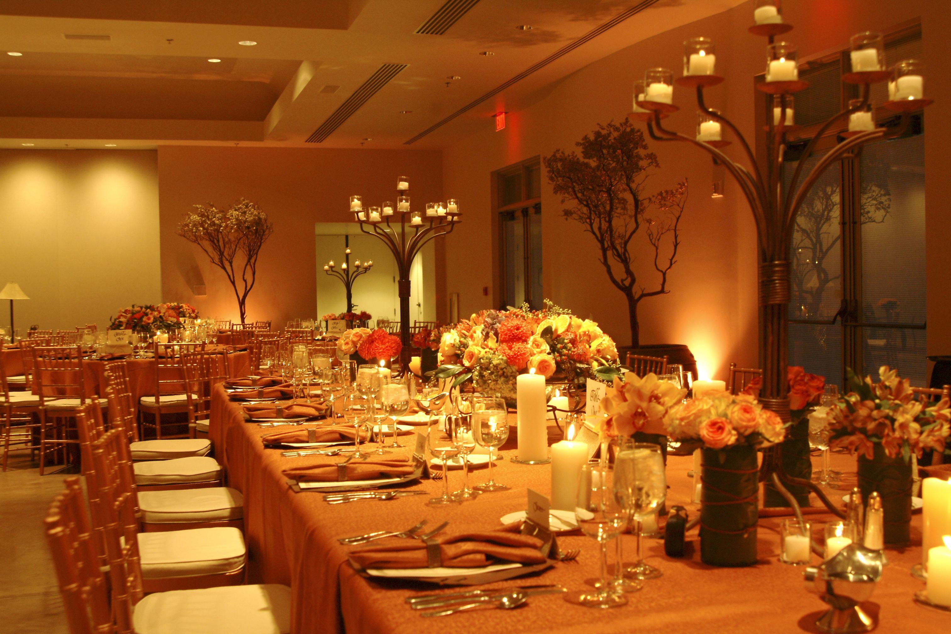 Desert Botanical Garden Wedding catered by Creation in