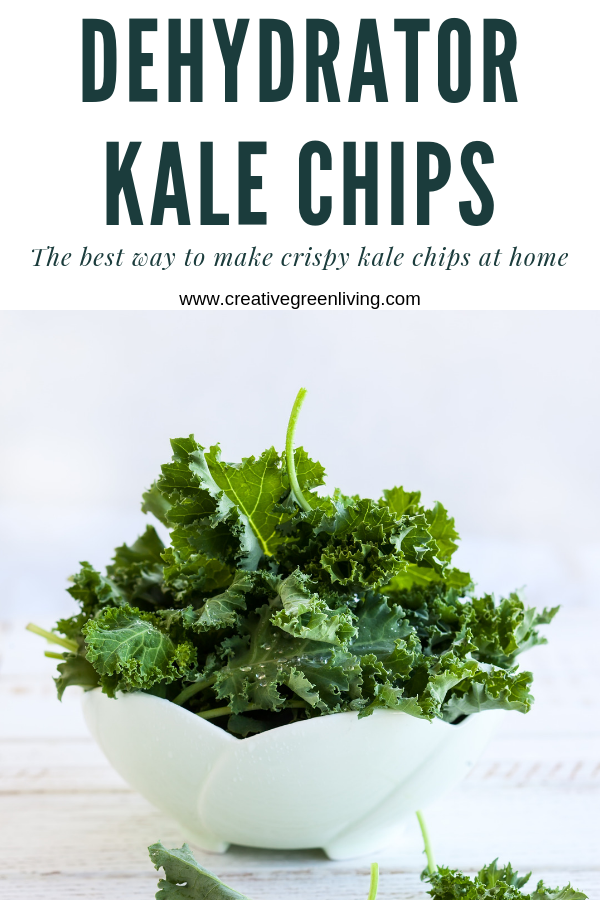 Salt & Vinegar Kale Chips How to make dehydrator kale chips! This easy recipe is seriosuly the best kale chip recipe I've tried! It's easy to make tasty kale chips in your dehydrator. This is the best way to get crispy and healthy kale chips that are keto, paleo, vegan and whole30 compliant.