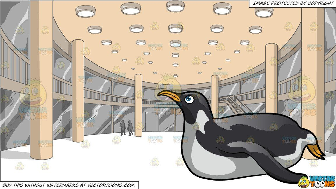 A Penguin Looking Up After Sliding and A View Of The