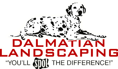 Dalmatian Landscaping Of Litchfield Nh Litchfield Home Decor Decals Novelty Sign