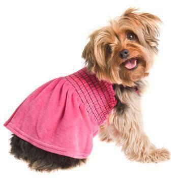 ᗋ‧:•★•: Լ....RuffLuv Fuchsia Uptown Girl Dog Dress