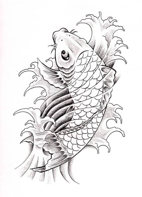Koi fish drawing best tattoo 578 800 koi for Koi fish sketch