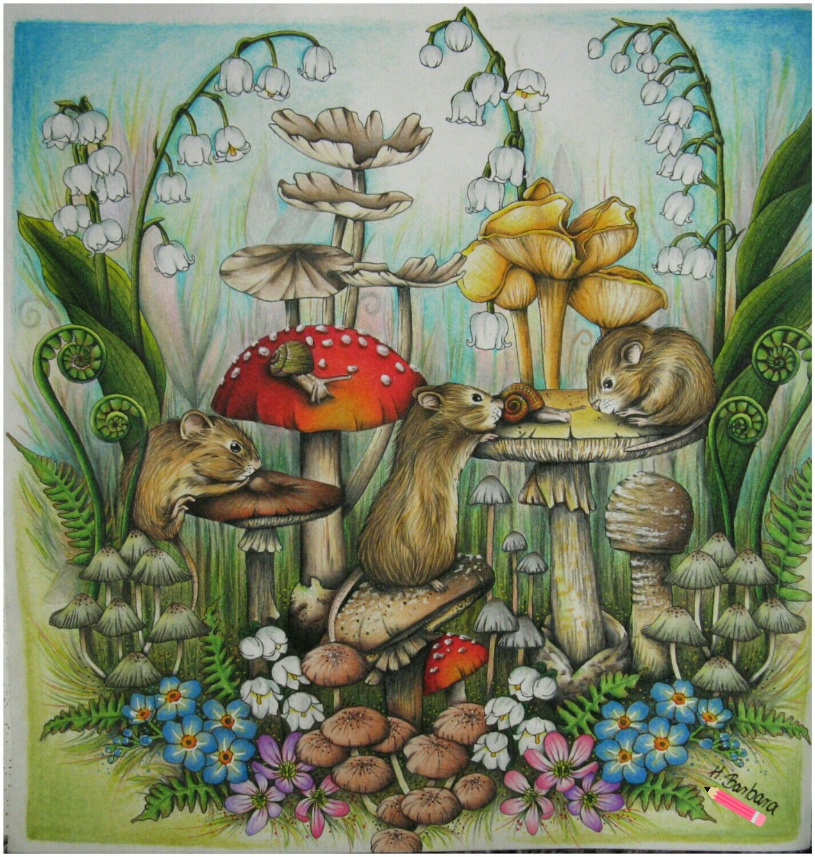 Menuet De Bonheur Colouring Book Enchanted Forest Coloring Book Forest Coloring Book Colorful Drawings