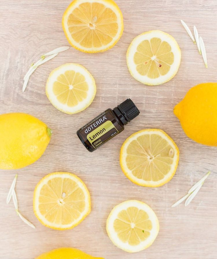 """It typically takes around 45 lemons to fill one 15mL essential oil bottle, making each drop have a strong, powerful aroma. Founding Executive, Chief Medical Officer Dr. David K. Hill, D.C. said """"Aroma in a 'chemical' sense means that individual compounds are able to interact with olfactory (smell) receptors in the nose. The chemistry of essential oils varies widely from oil to oil, which explains why essential oils possess such widely different aromas, and thus, affect us in different ways.""""…"""