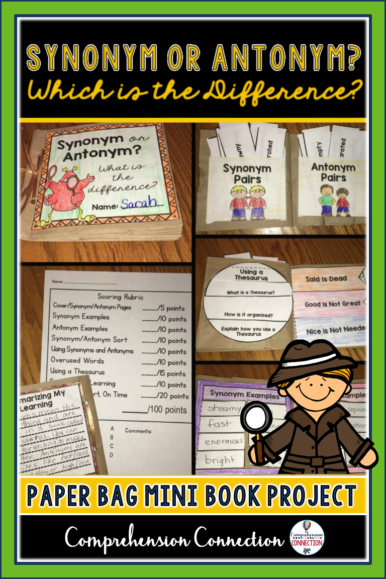 Synonym and Antonym Paper Bag Book | Products from