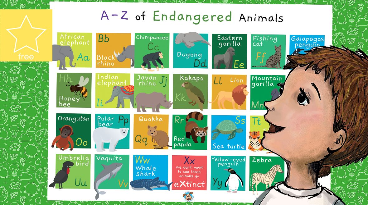 AZ of Endangered Animals Poster in 2020 (With images