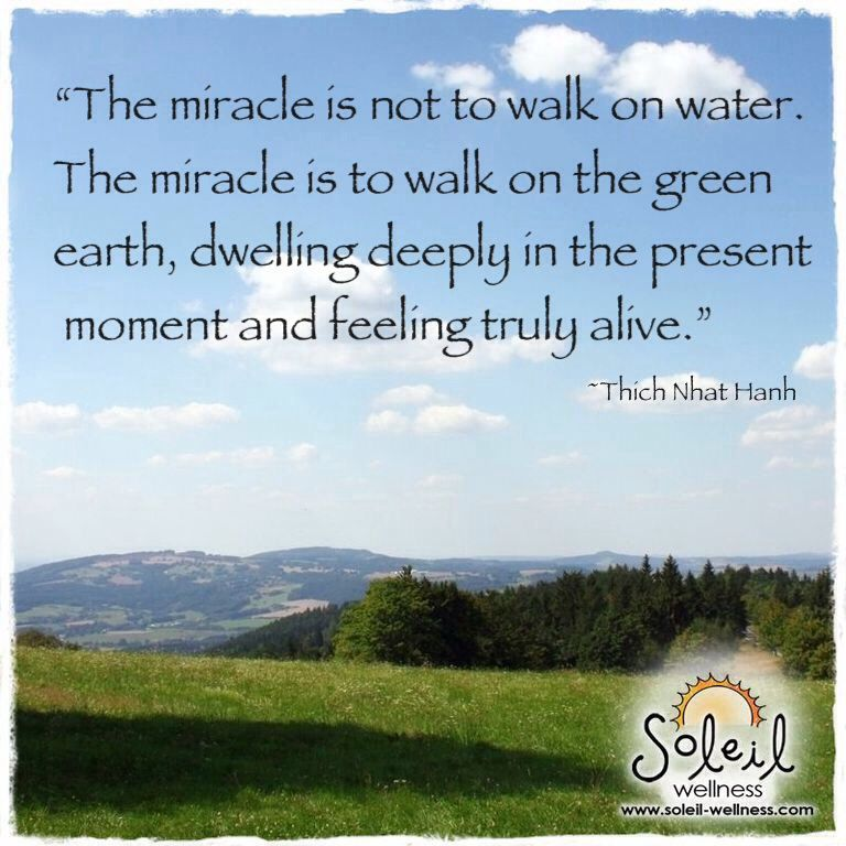 Image result for thich nhat hanh quotes on wellness