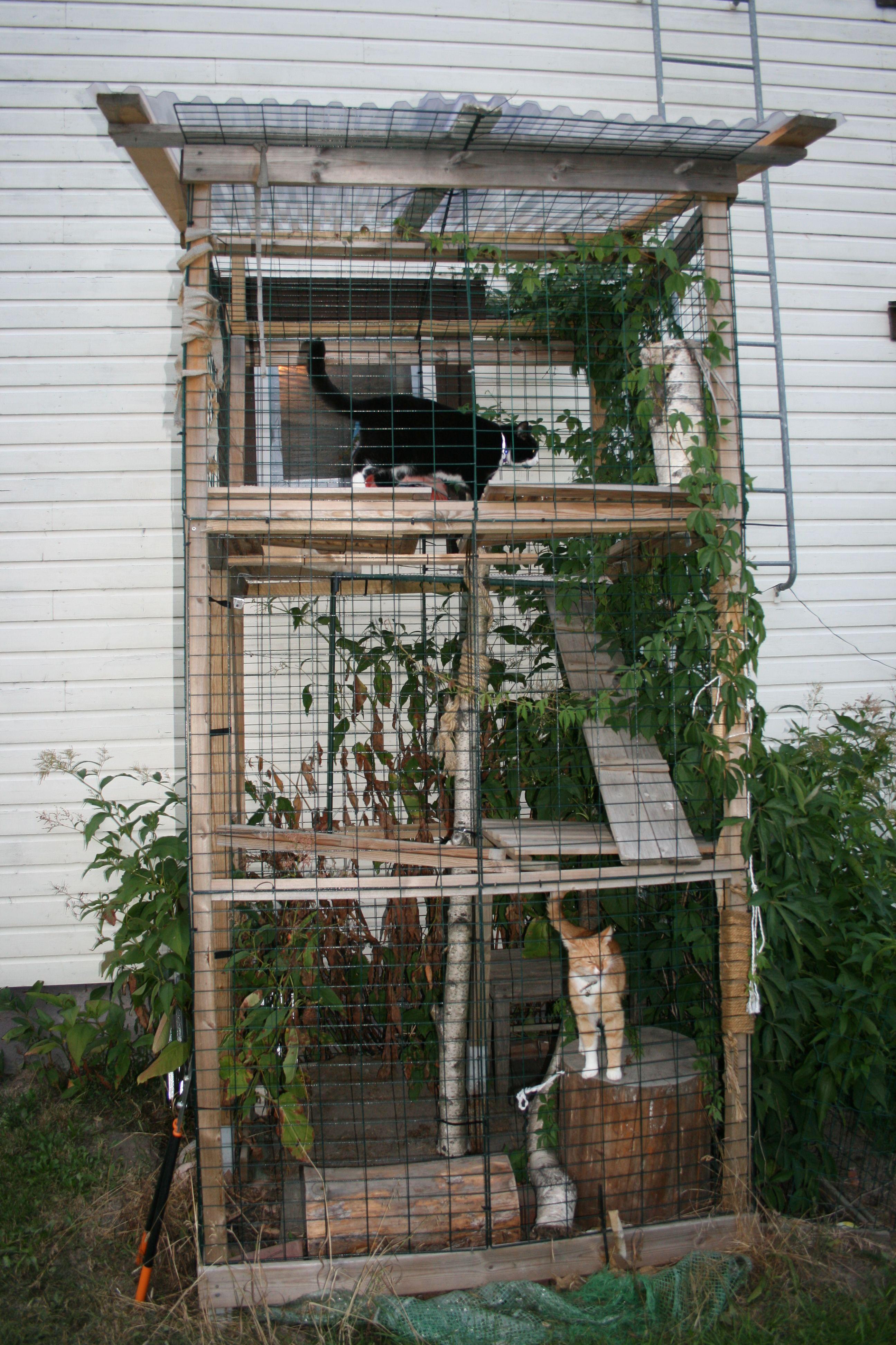 Kissatarha Ladder Decor Decor Home Decor