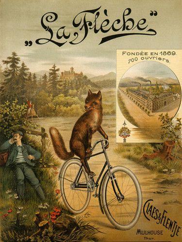 Fox Riding Bicycle Bike La Fleche Since 1869