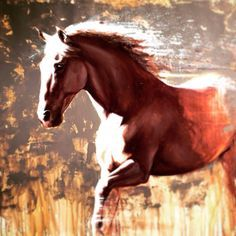 Phaeton by Catherine Ingleby horse painting. Art, Equine, Andalusian, Oil painting, Artist.