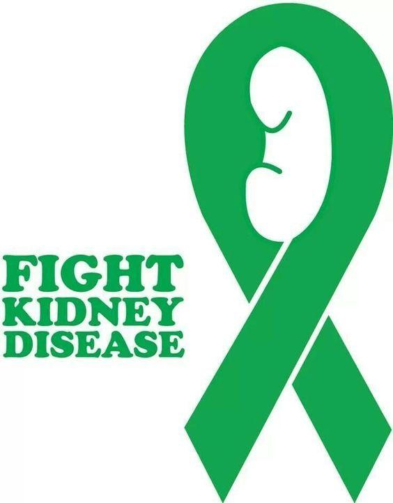 kidney ribbon funny n nice medical stuff pinterest