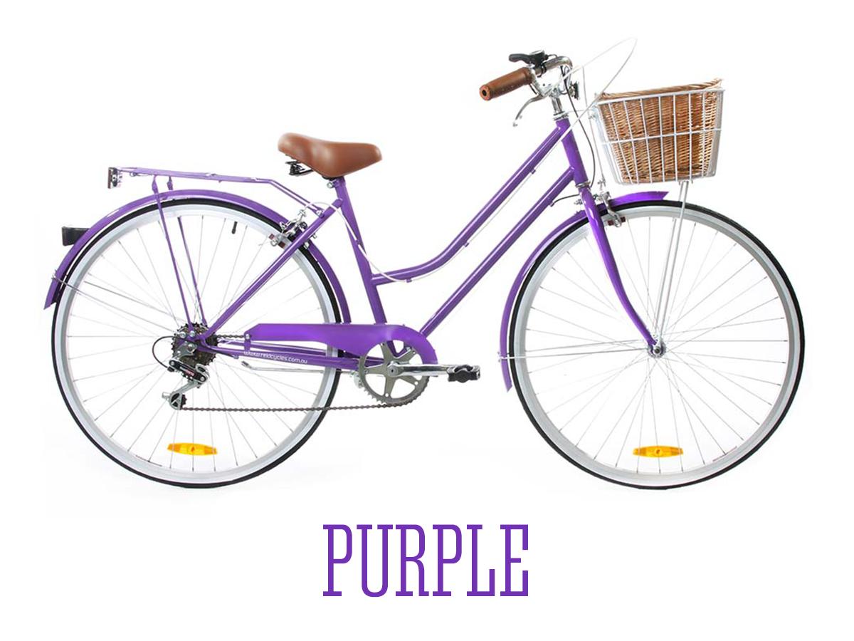 Buy Reid Vintage Ladies Bike 6 Speed Special Edition Lifetime Warranty Vintage Ladies Bike Purple Bike Womens Bike
