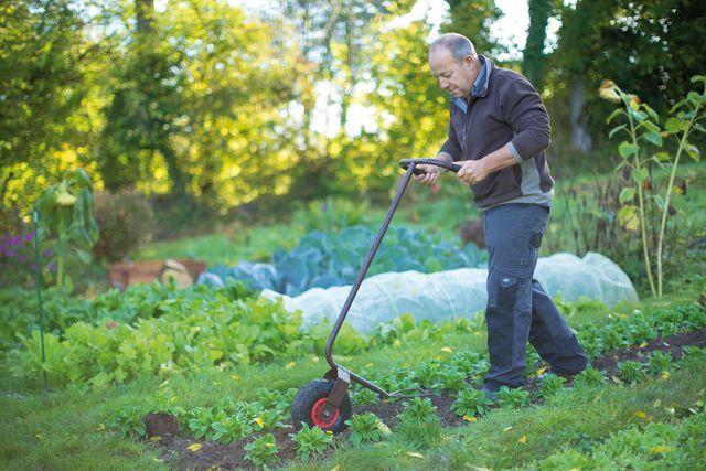 Comment faire un jardin potager jardinage et entretien - Comment faire un beau jardin potager ...