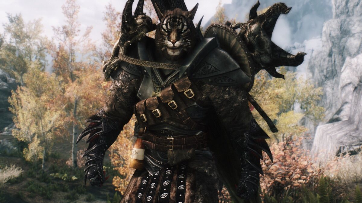 khajiit skyrim the elder - photo #12