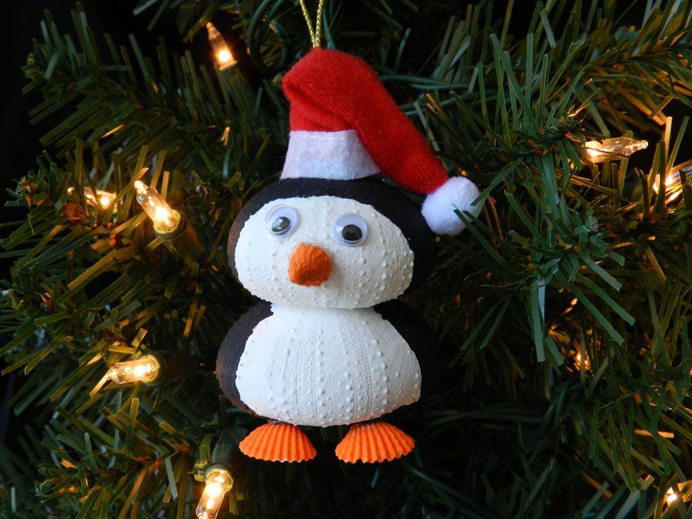 Sea Urchin Penguin Christmas Ornament: This Penguin Urchin