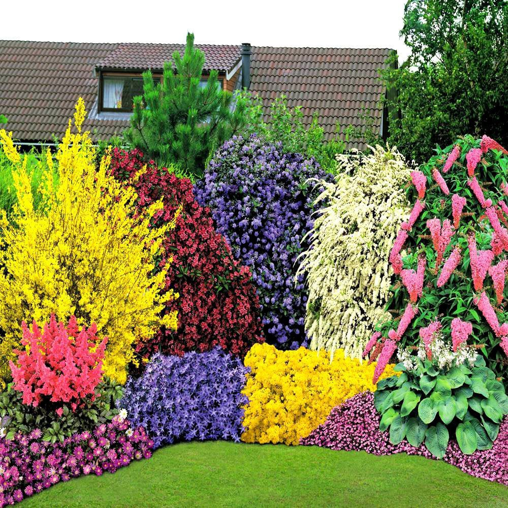 Garden bed with trees  Colorful flower bed  Flowers  Pinterest  Gardens Yards and Flowers