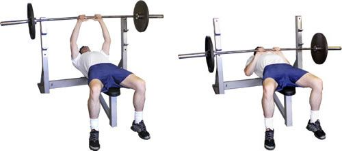 Close Grip Bench Press | Coaches Colleague | triceps | Pinterest