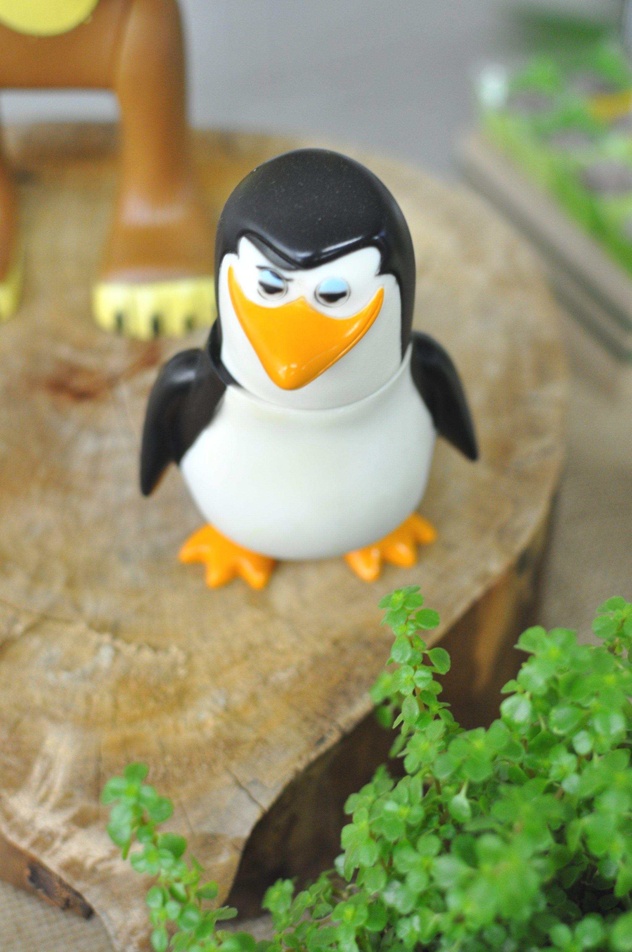 pinguim ;