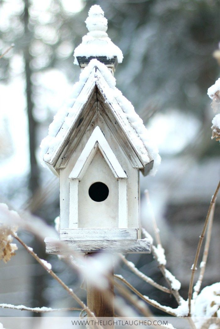 White bird house in snow www.thelightlaughed.com taking a winter break