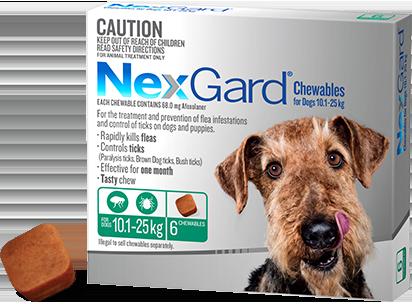 Nexgard Large Dog Chew 6 Chempro Online Chemist Dogs