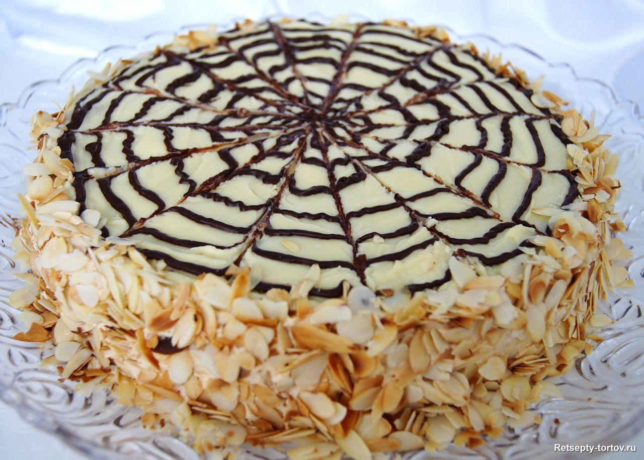 фото торты рецепт
