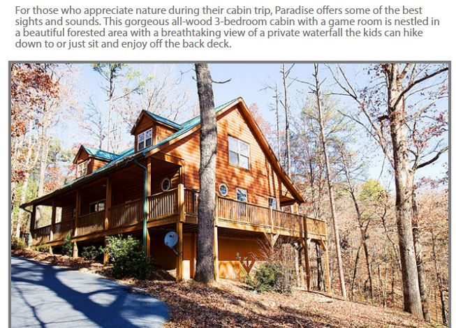 Introducing Paradise Cabin A Modern Cabin With A Rustic Feel The Cabin Is Nestled In A Beautiful Wooded Setting In The North Cabin Cabin Rentals Cabin Life