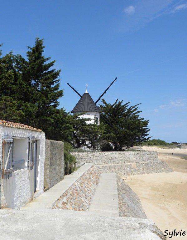 """""""En passant par les moulins"""" - Noirmoutier - Vendée"""