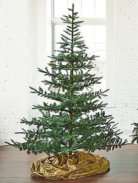 the fresh cut noblis fir artificial christmas tree features lifelike fresh looking branches and is so realistic even youll forget its not the real thing