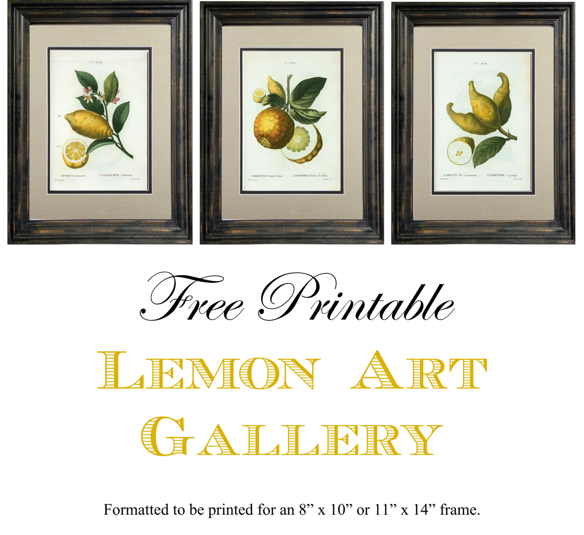 Free Printable Lemon Art. Formatted to be printed for an 8\