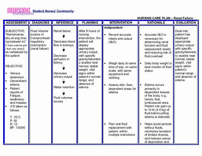 Nursing Home Care Plan Template Luxury Nursing Crib Nursing Care Plan Renal Failure Nursing Care Plan Teaching Plan Nurse Teaching