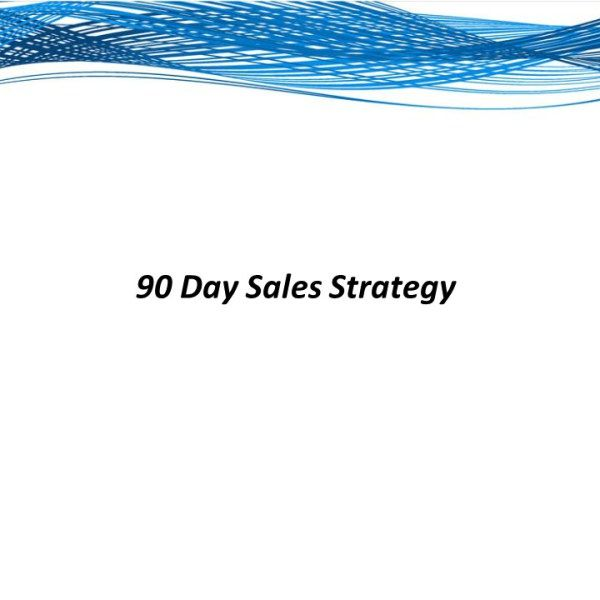 Day Sales Plan For The Pharmaceutical Or Medical Device