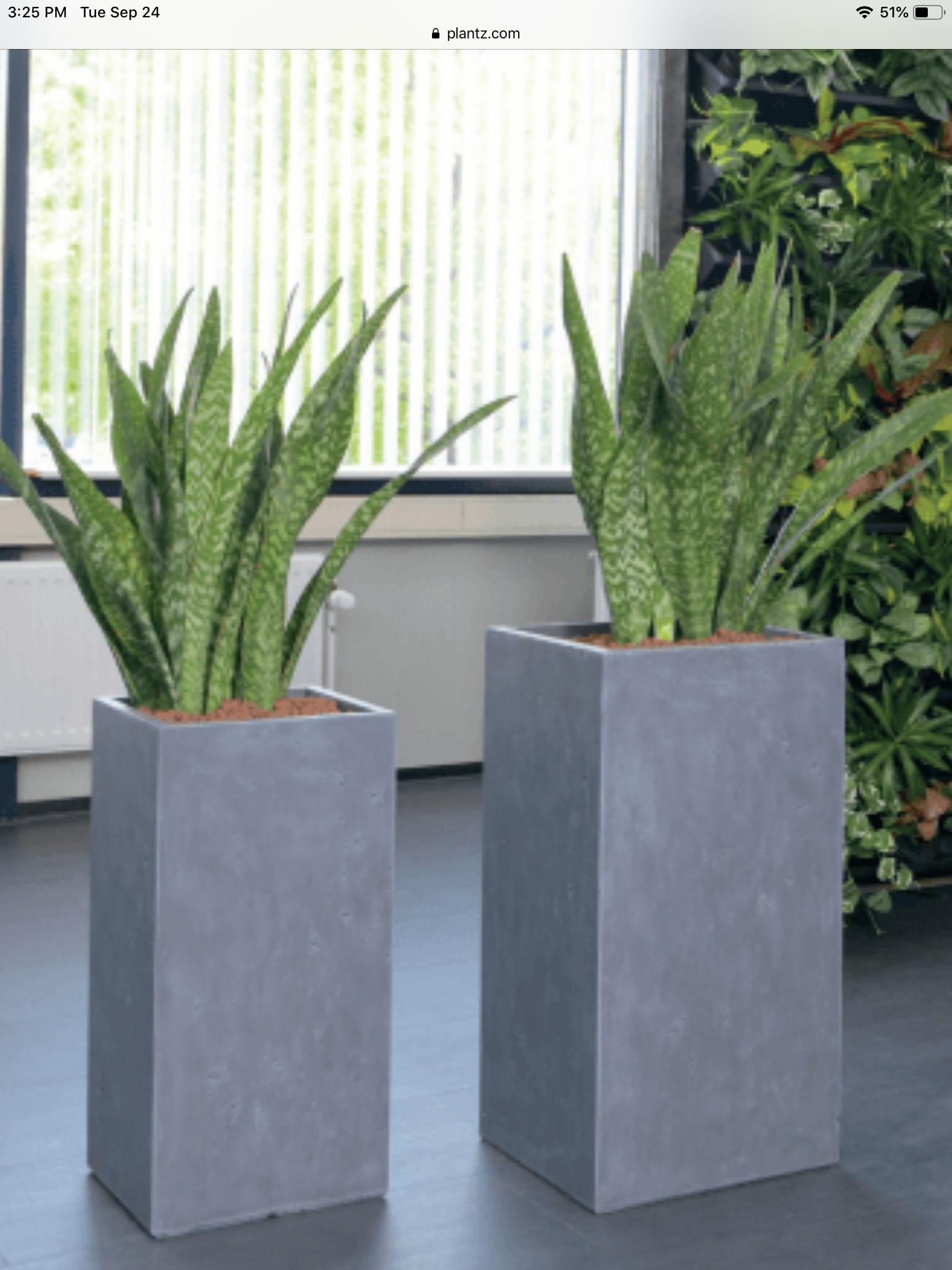 Strong Clay Tall Squares PLANTZ Planters, Unique