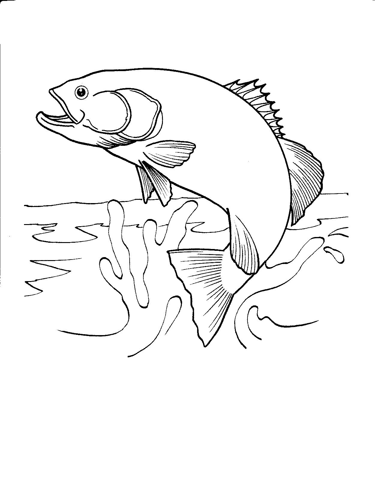 Printable fish coloring pages free printable fish for Adult fish coloring pages