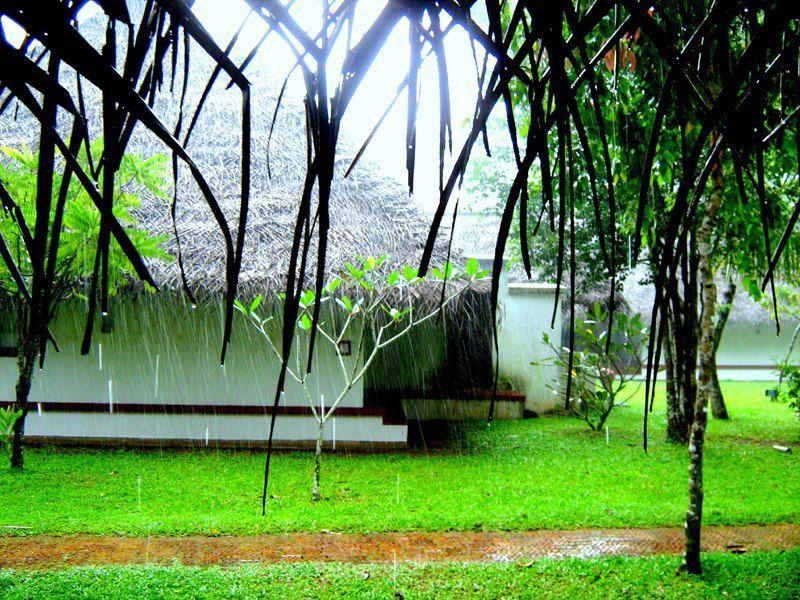 Beauty of Kerala Tourist Places to Visit Kerala