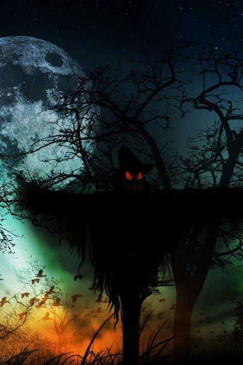 Evil Scarecrow Dark Evil Halloween Halloween Pictures Happy Halloween Scarecrow Halloween Ideas Halloween Horror Nights Halloween Wallpaper Halloween Pictures