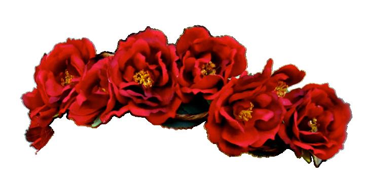 transparent flower crowns Transparent flowers, Flower